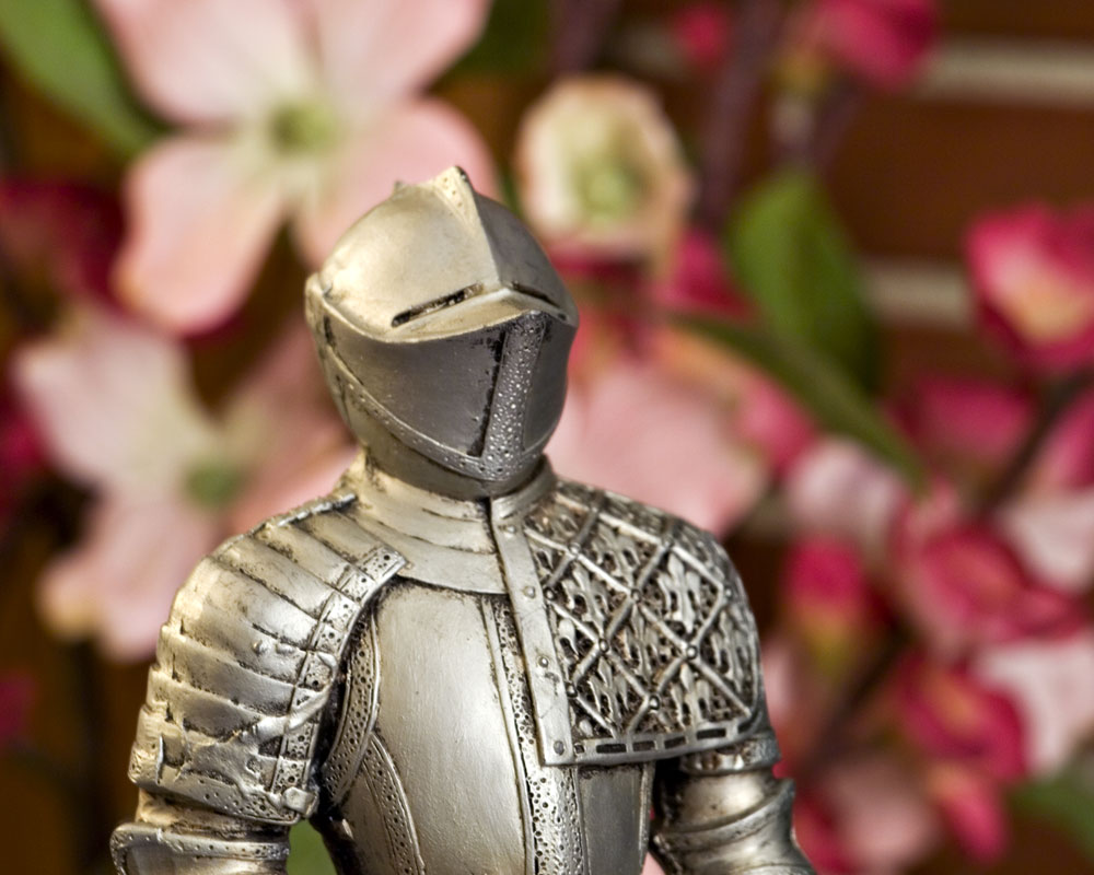 knight posing by pink flowers