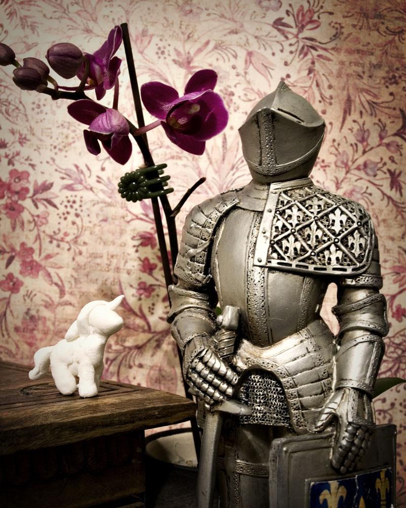 knight with tiny unicorn