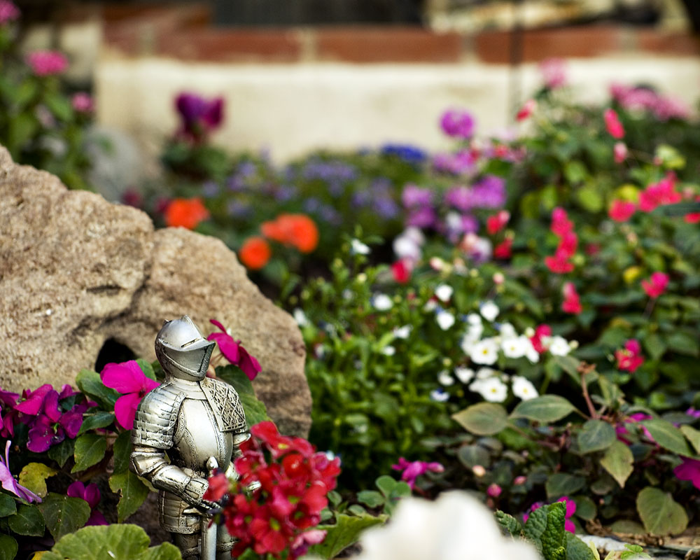 knight figure in flower garden