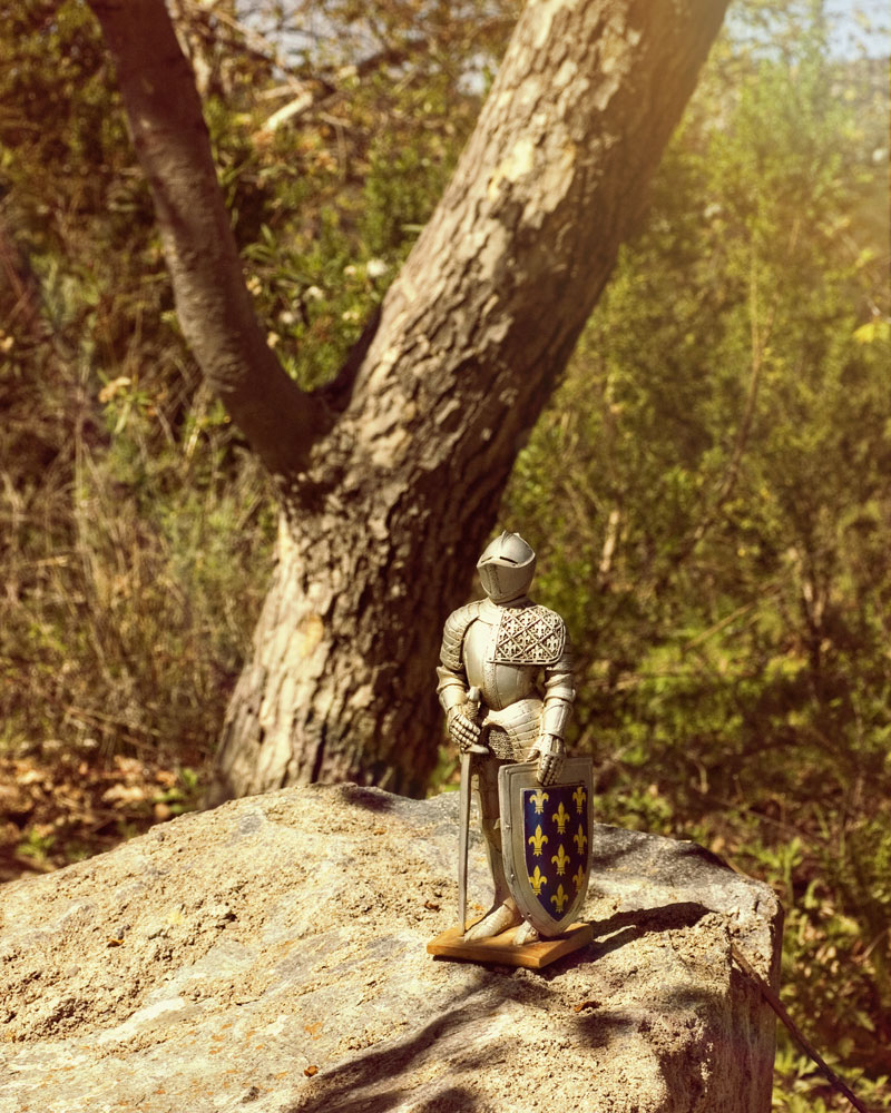 knight figure in wilderness